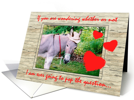 Donkey Marriage Proposal Humor card (147379)