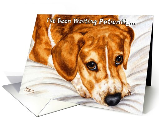 Welcome Home from Pet - Beagle Dog card (298325)