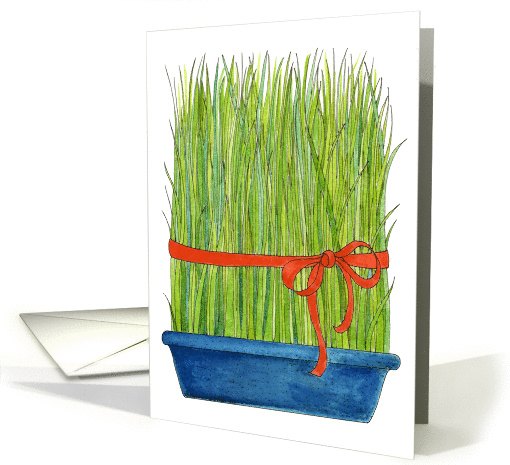 Wheat Grass - Persian New Year card (139420)