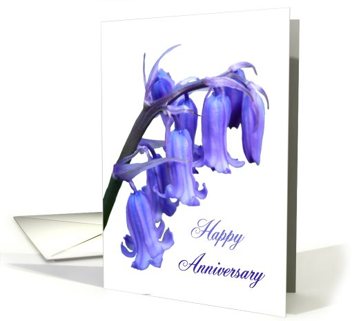 Bluebell Happy anniversary card (425620)