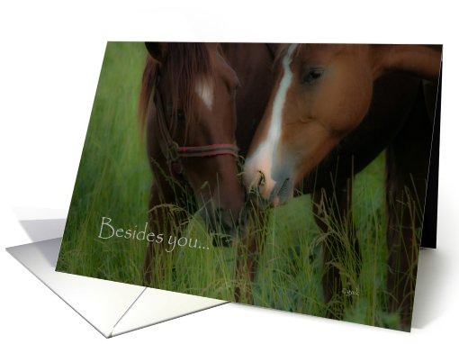 Nothing Else: photograph of two horses card (828036)