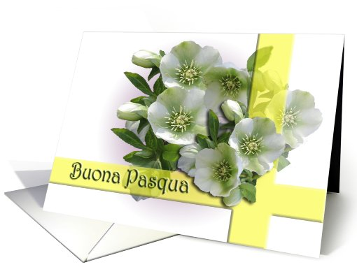 Buona Pasqua! Italian Easter Greetings card (550318)