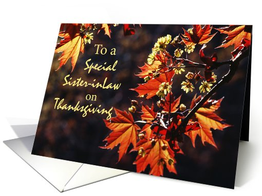Sister-in-Law, Thanksgiving card (268105)