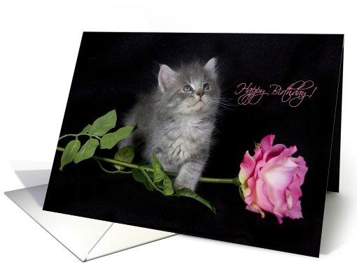 Happy Birthday card (415824)