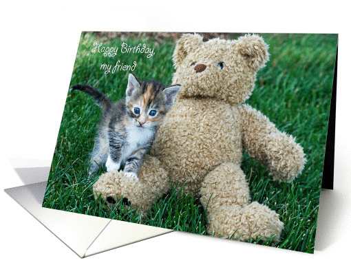 birthday kitten with teddy bear card (460717)