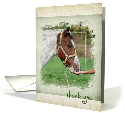 horse-thank you card (663572)