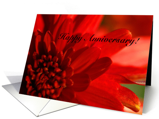 Happy Anniversary card (163035)