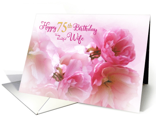 75th Birthday for Wife cherry blossom card (612221)