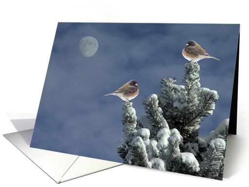 After The Snow Shower card (362099)