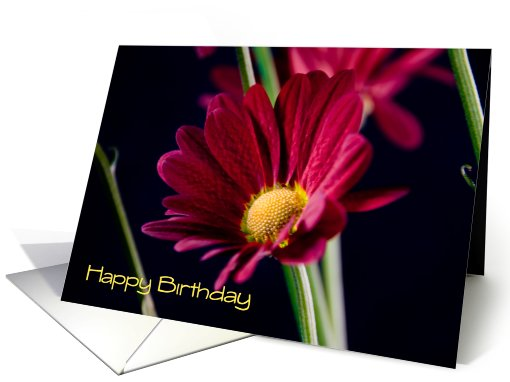 Employee Happy Birthday - Red Flower card (450935)