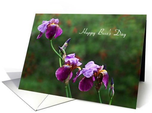 Boss's Day - Purple Iris card (639946)