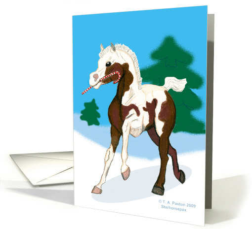 Candy Cane Christmas Colt card (499153)