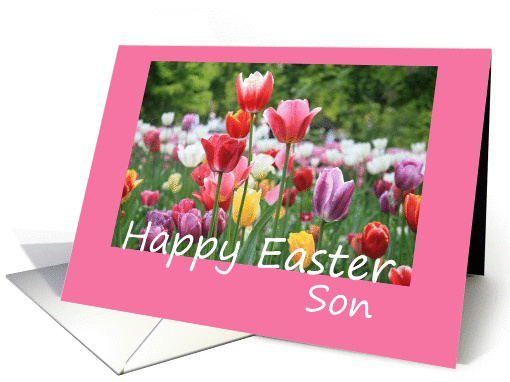Son Happy Easter - Multicolored Tulips card (902299)