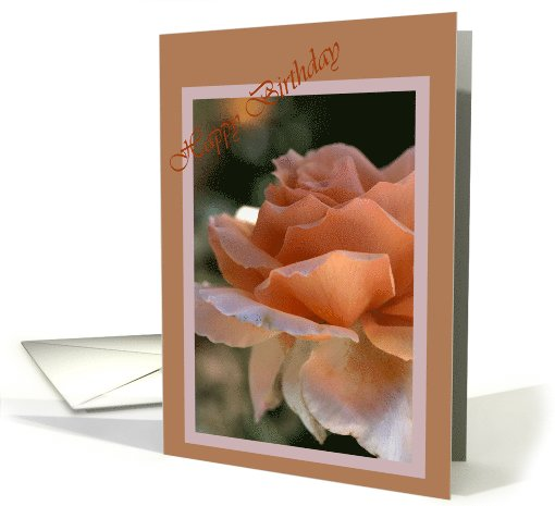 Happy Birthday - Orange Rose in flower card (621180)