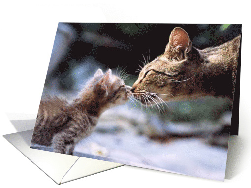 Happy Mother's Day Kissing Cat & Kitten card (581309)