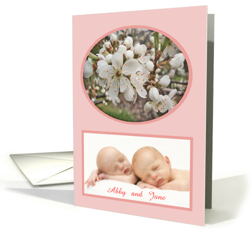 Plum blossom,new baby twins ,pink, photo card. card (856396)