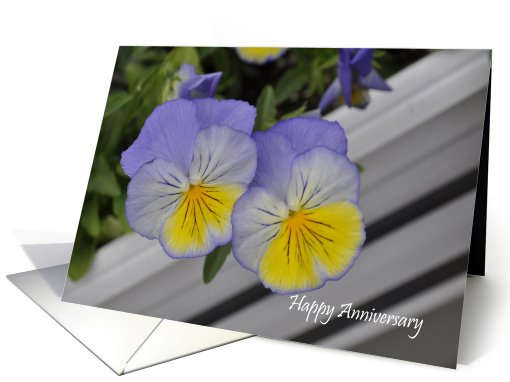Pansies Anniversary card (700627)