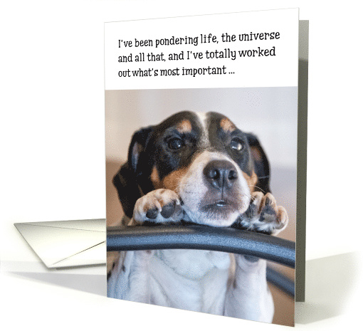 Birthday Card - Humorous Dog Pondering Life card (845046)