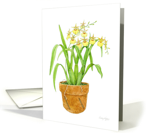 Dancing Ladies Orchid Blank card (1100048)