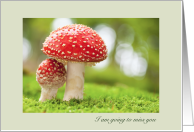 Miss you Parent to Child Going Away to College Sheltering Mushroom card
