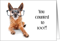 Congratulations Counting to 100 Funny Dog with Glasses Uses Tail card
