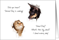 Shred Day Dog and Cat Shed Fur Humor No Hairballs card