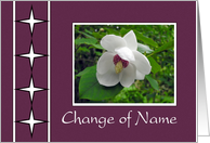 Change Of Name - Floral, Plum Frame card