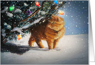 The Christmas Cat card