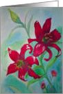 Brilliant Red Lillies Flowers Thinking of You card