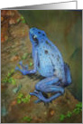 Miss You Brillliant Blue Poison Dart Frog card