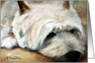 Westie West Highland Terrier Dog -Dog Tired card