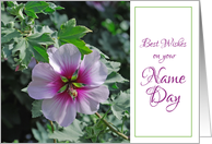 name day rose of sharon card