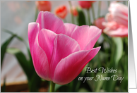 Name Day Tulip card