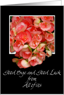 good bye and good luck from all of us coral begonias card