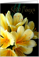 greek easter clivia cream card