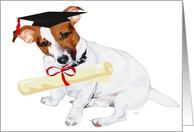 Jack Russell Terrier Happy Graduation card