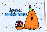 happy birthday cat - French card