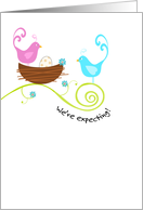 Birds with Nest and Egg - Pregnancy Announcement card