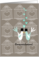 Cute Birds with Cages - Gay Wedding Congratulations card