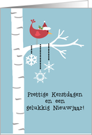 Dutch - Red Cardinal Christmas card
