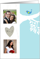 Photo Wedding Invitation - Bluebird of Happiness card