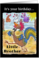 Birthday for Little Brother -Rooster Struts through the Barnyard card