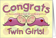 Congratulations on becoming Great Grandparents to Twin Girls-Two Sleeping Babies card