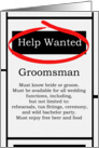 Humorous Groomsman Invitations Help Wanted Ad Cards