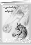 Whispering Winds Step Son Happy Birthday card