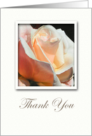Soft Rose Thank You For Sympathy Condolences Card