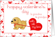 Little Puppy Dog Grandparents Valentines Day Love Card Greeting cards