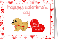 Little Puppy Dog Granddaughter Valentines Day Love Card Greeting cards