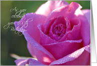 A Rose For Her 100th Happy Birthday Paper Greeting Cards