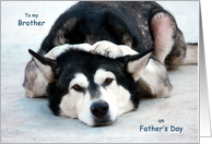 It's a Doggone Shame! For Brother on Fathers Day Cards Paper Greeting Cards